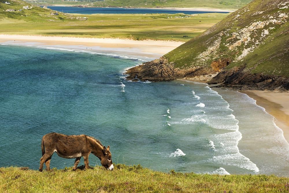de-mooiste-landschappen-van-Ierland