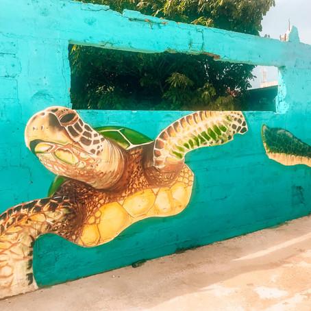 De mooiste street-art van Aruba in San Nicolas