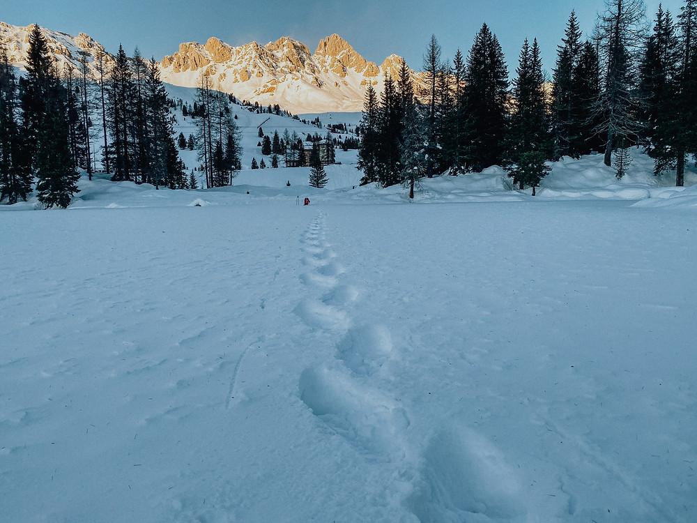 wintersport-val-di-fassa