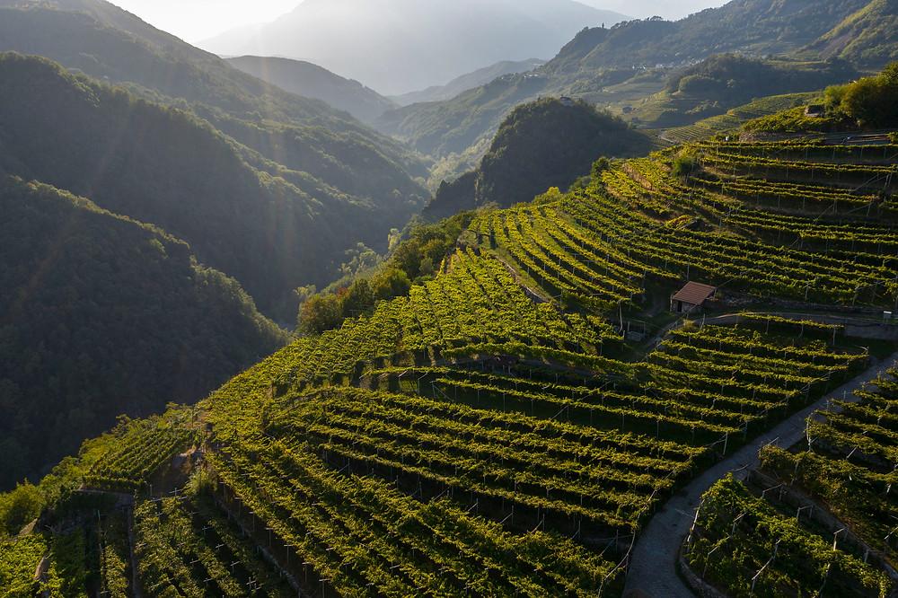 De-leukste-roadtrip-in-Trentino