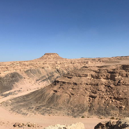 Overleven in een woestijnklimaat