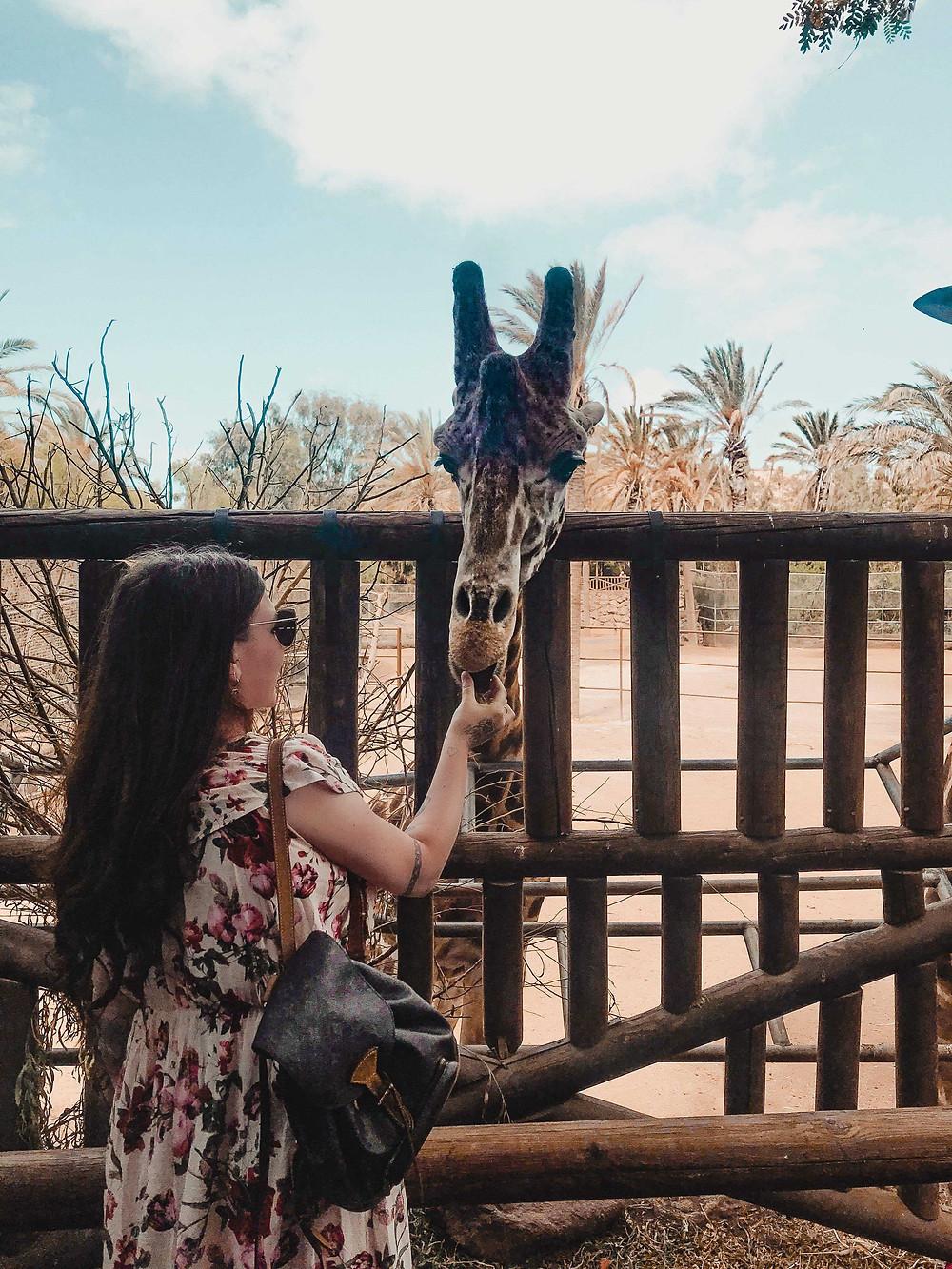 doen op Fuerteventura