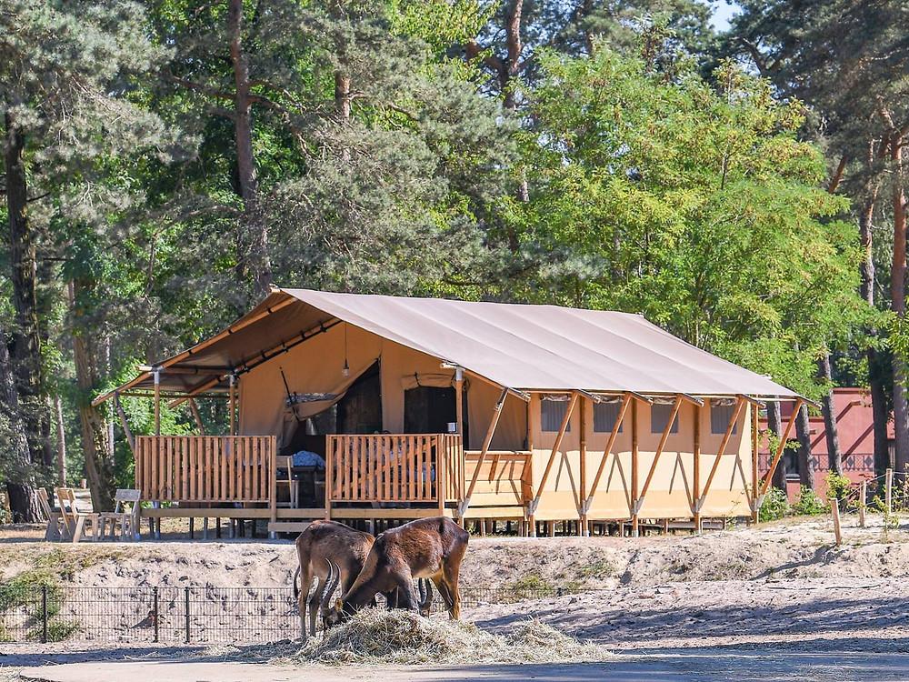 leukste-vakantieparken-Nederland-midweek