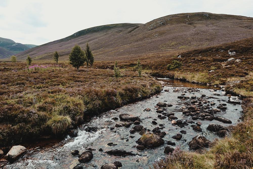 activiteiten-Cairngorms-National-Park-Schotland