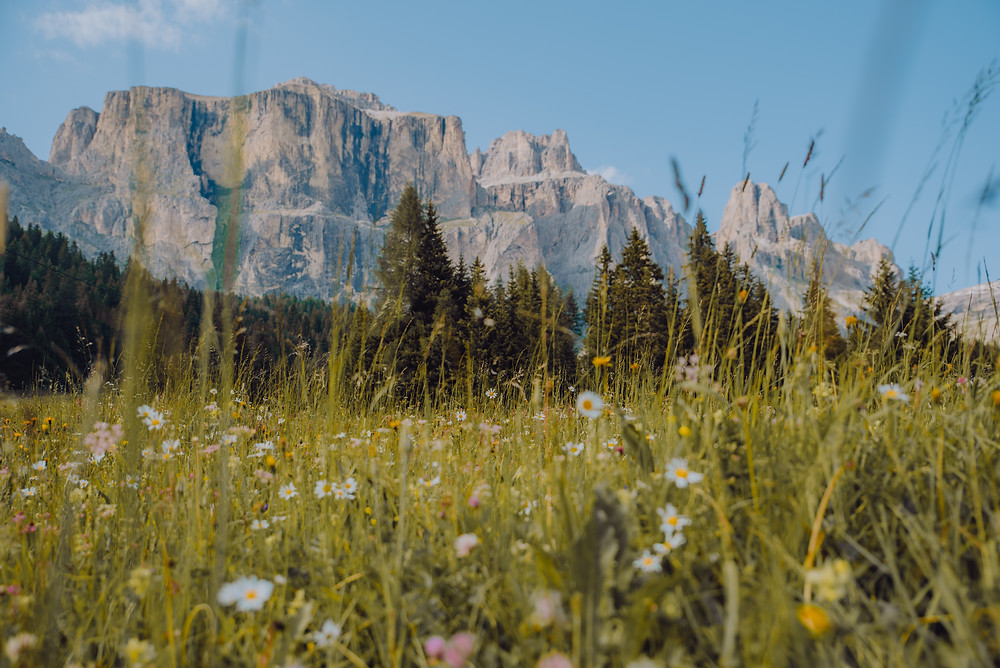 zomer-in-de-dolomieten