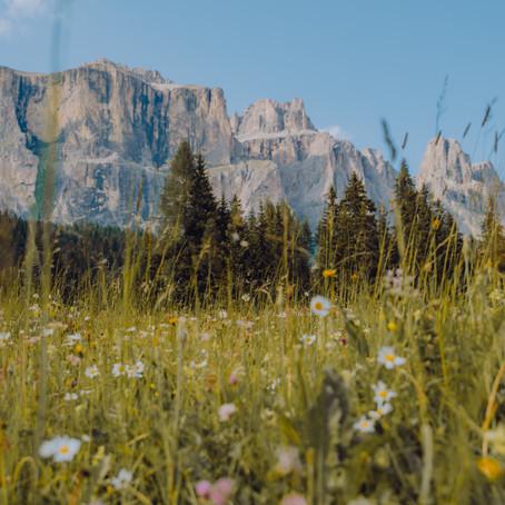 Zomer in de Dolomieten - Val di Fassa