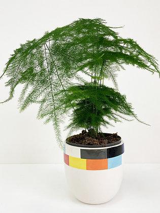 Plant Pot 04