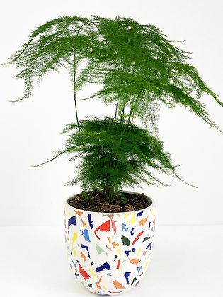 Plant Pot 02