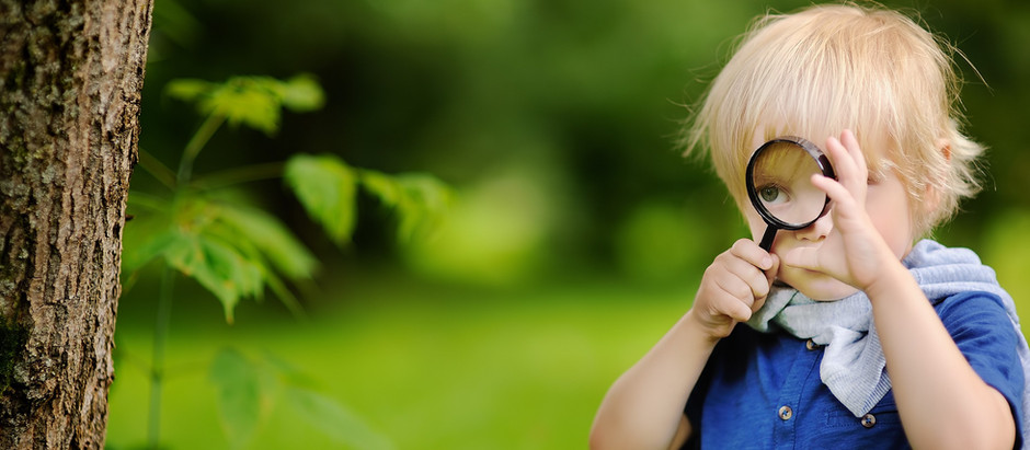 Helping Kids Communicate through Art and Nature