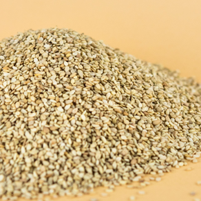Fresh NEW stock of Conventional Sesame Seed!