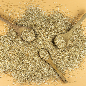 A positive GROWTH for Sesame in the European market!
