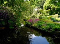 Hodnet_Hall_Gardens_©_Maria_Nunzia__Varvera_1024
