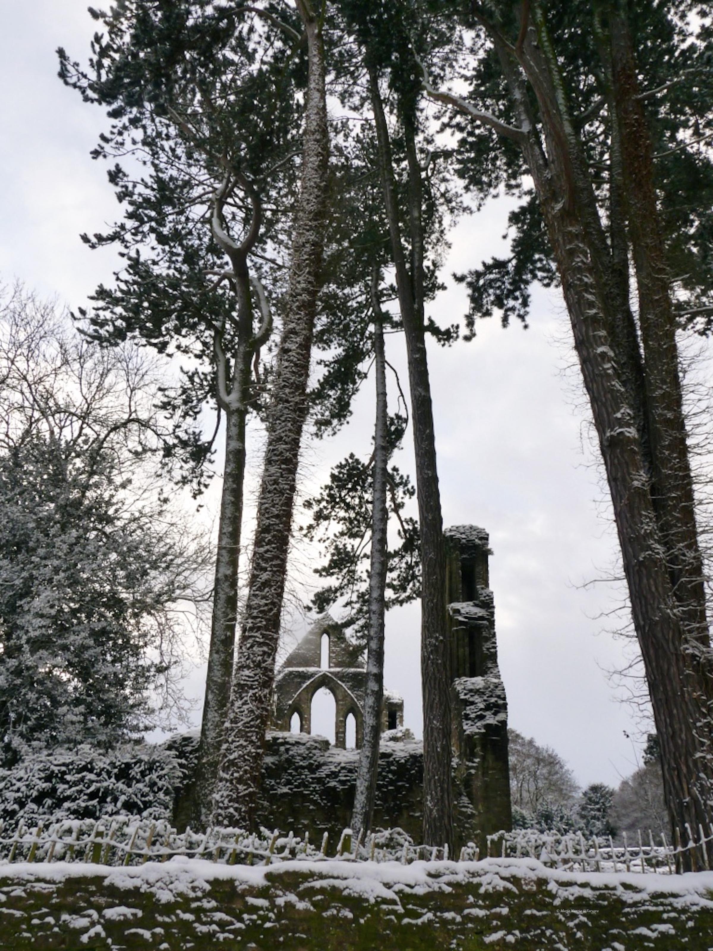 Wenlock_Abbey_in_the_snow_©Maria_Nunzia__Varvera_