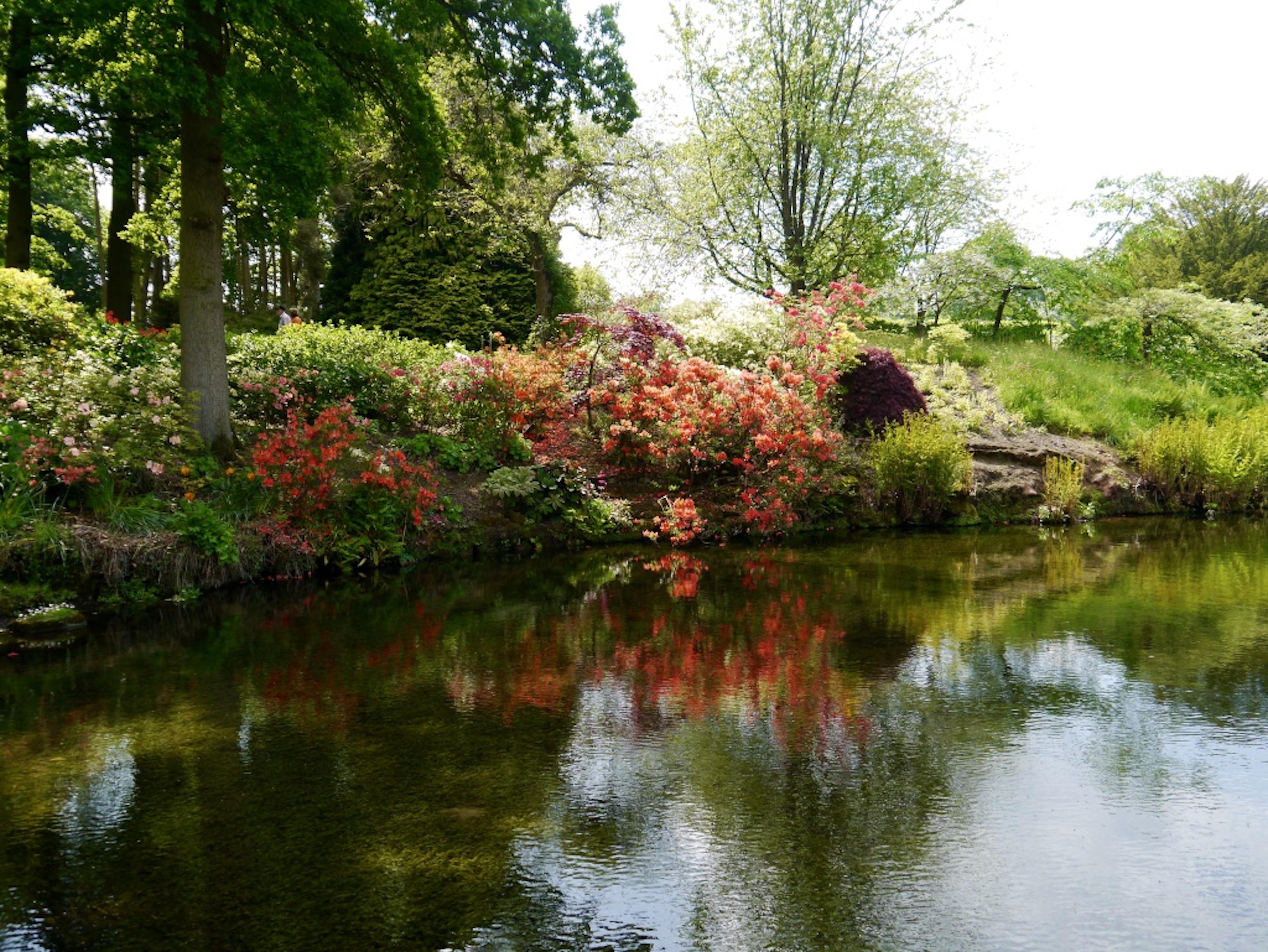 Hodnet_Hall_Water_Garden_©_Maria_Nunzia__Varvera_