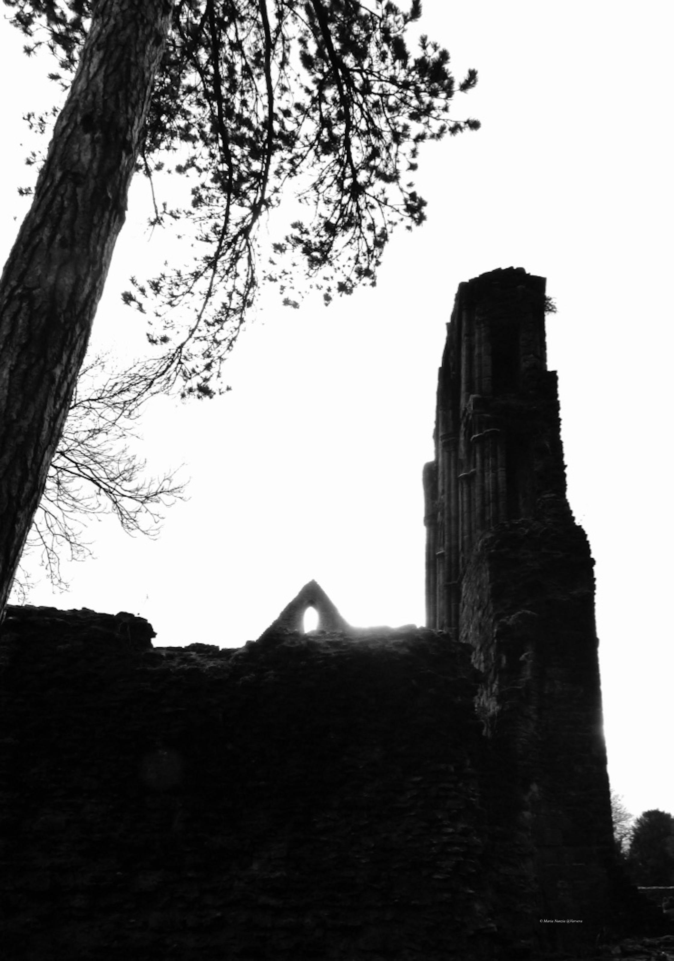 Wenlock_Abbey_light_through_window_©_Maria_Nunzia__Varvera_