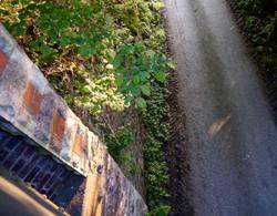 View_from_bridge_Wenlock_Edge_©_Maria_Nunzia__Varvera_