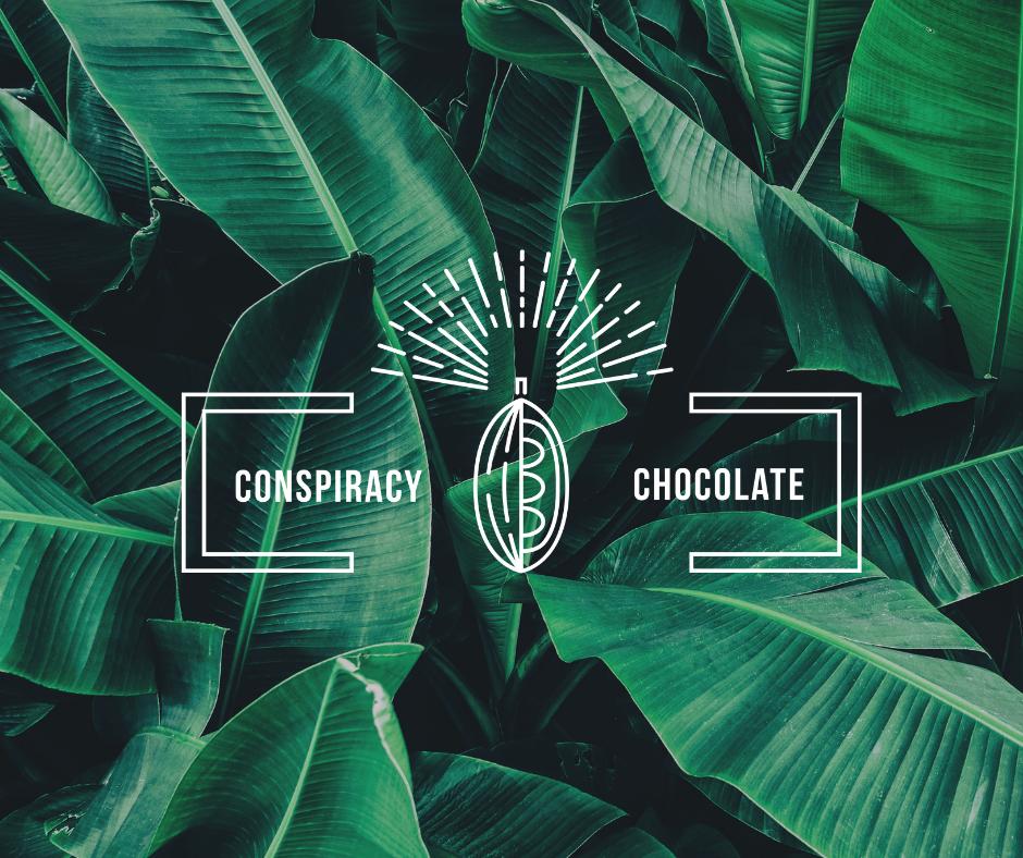 Craft Chocolate Handmade in Hong Kong | Conspiracy Chocolate