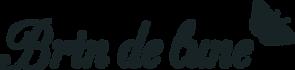 logos-BDL_noir.png