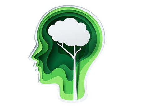How to Cultivate a Sustainable Mindset