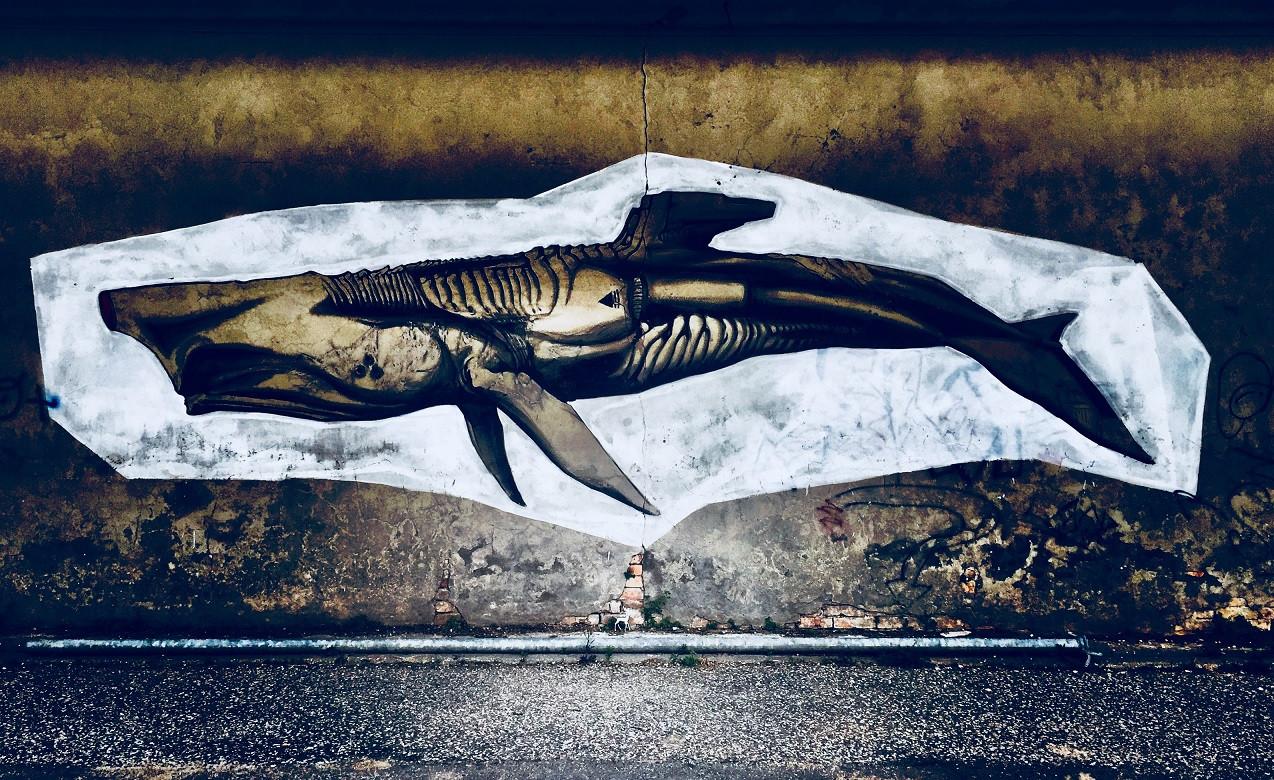 Ravennské graffiti