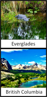 Everglades and British Columbia