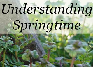 Understanding Springtime
