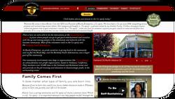 Website 9