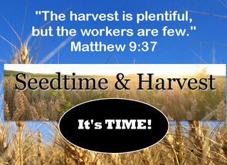 Seedtime and Harvest: It's TIME!