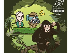黑猩猩之母~珍·古德
