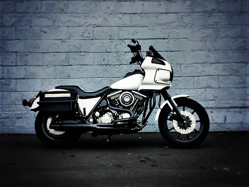 Fxr and Sportster up to 2010  WITH single sticker