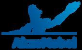 akzonobel-logo.png