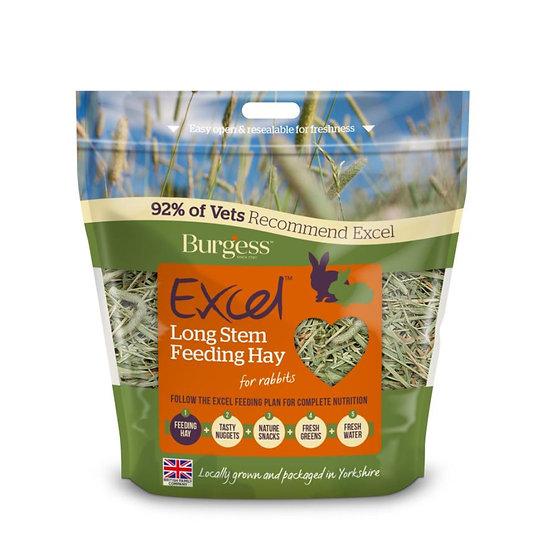Burgess Excel Feeding Hay Long Stem 1kg