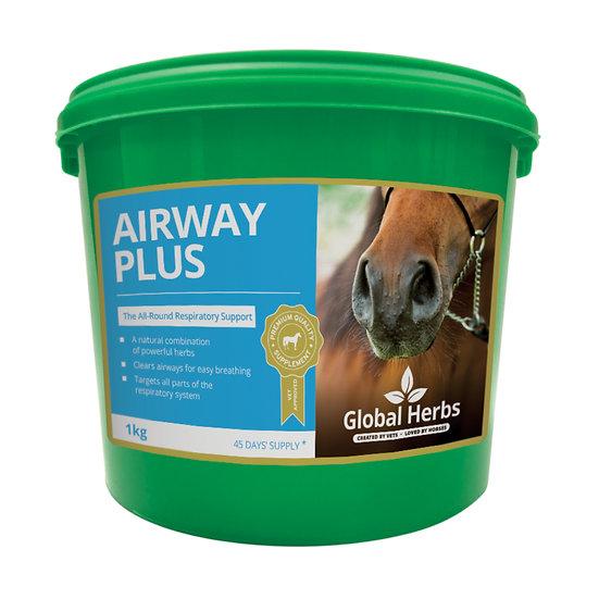 Global Herbs Airway Plus Powder