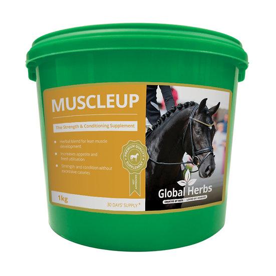 Global Herbs MuscleUp
