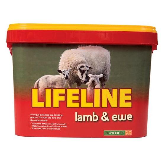 Lifeline Lamb & Ewe Mineral Bucket