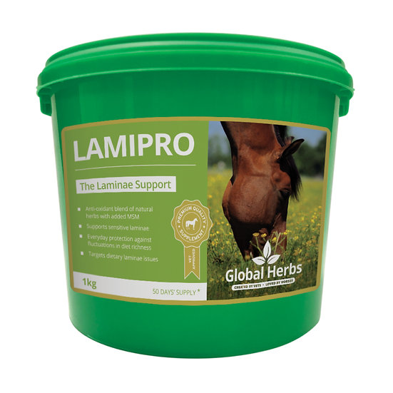 Global Herbs LamiPro Powder