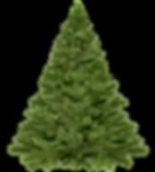 christmas-tree-christmas-1796131_640.png