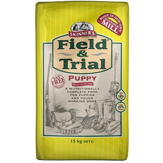 Skinners Field & Trial Puppy