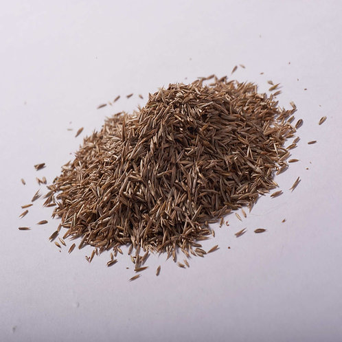John Chambers Grass Seed Landscaping with Rye