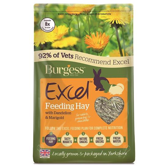 Burgess Excel Herbage Dandelion and Marigold 1kg