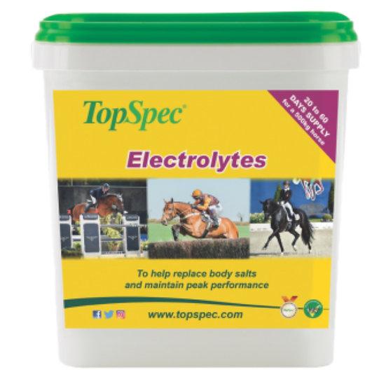 Topspec Electrolytes 3Kg