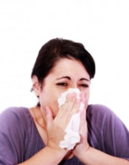 Summer Allergies – An Acupuncturist's Perspective