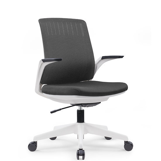 Mesh Ergonomic Office Chair – WHALE