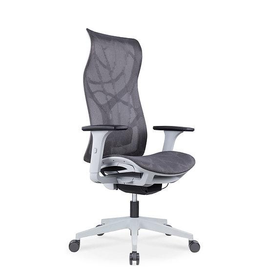 Mesh Ergonomic Office Chair – SIT