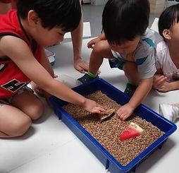 Children looking at Black Soldier Flies