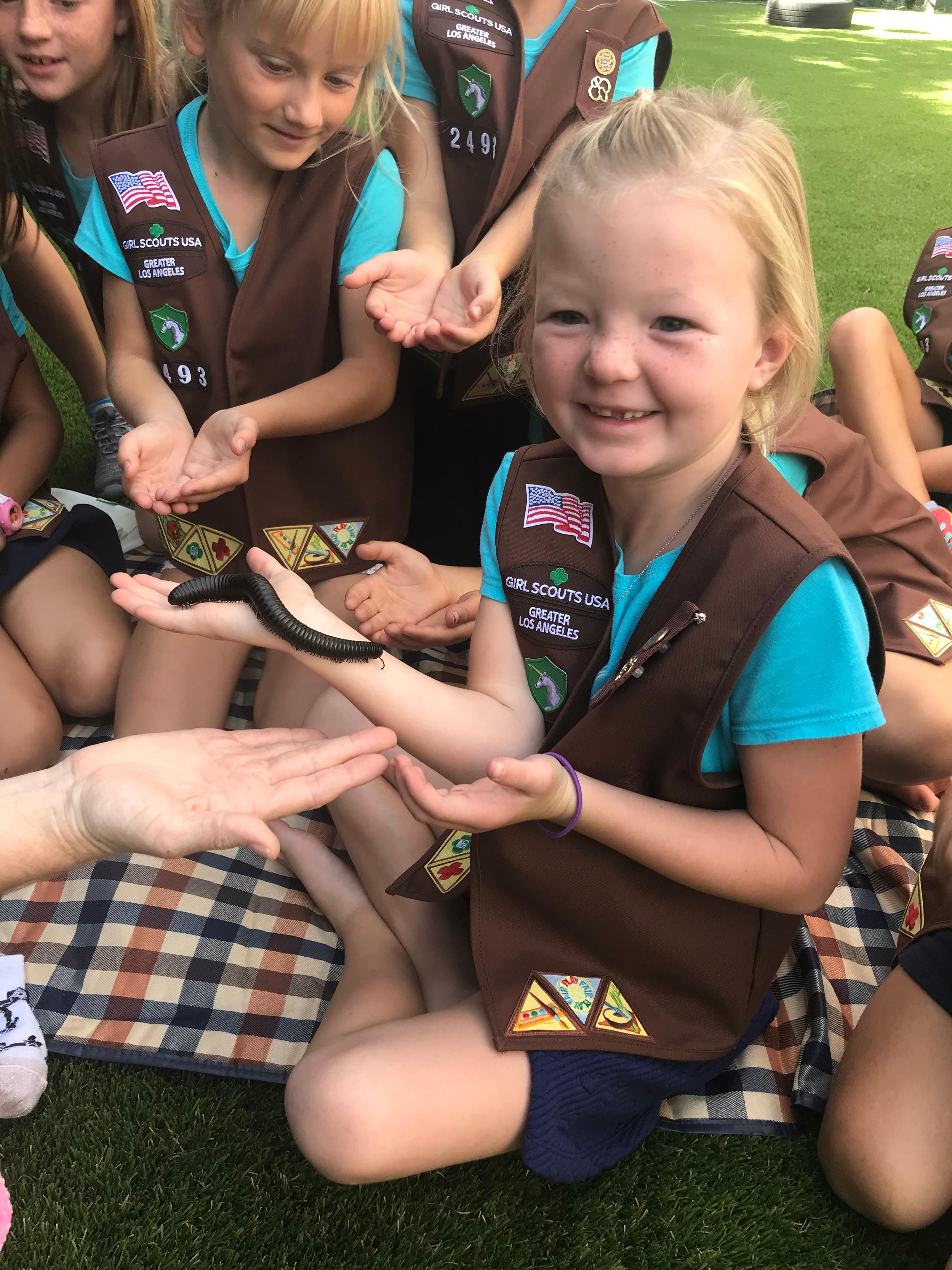 Scouts Programs