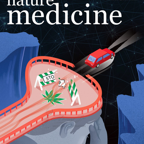 Journal cover illustration