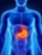 Fibroscopie Gastroscopie EOGD FOGD Endoscopie