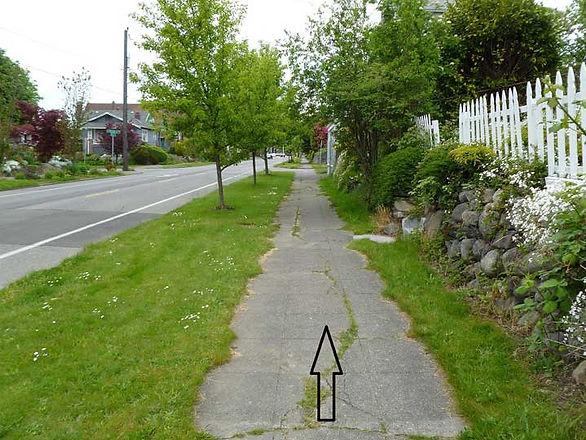 directionscene.jpg