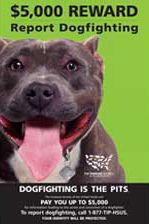 dogfighting-reward-poster2.jpg